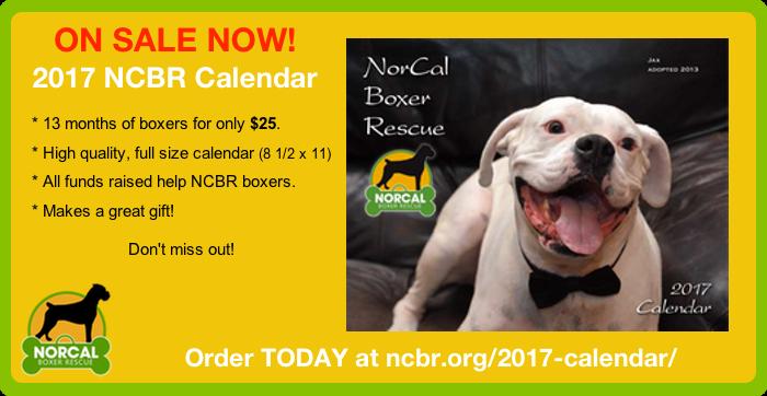 2017 NCBR Calendar