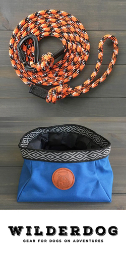 Wilderdog | Gear for Dogs on Adventures