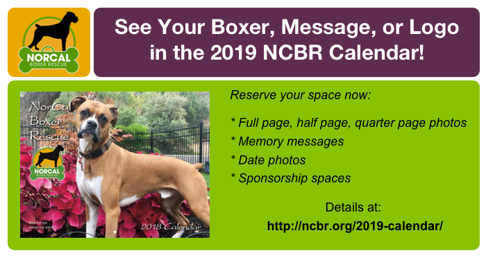 2019 NCBR Calendar Submissions