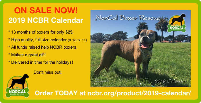 Order Your 2019 NCBR Calendar Today
