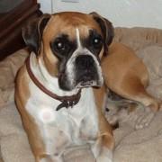 Roxy - February, 2009
