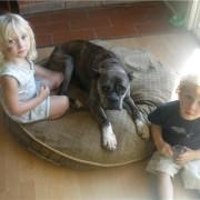 Shasta - August, 2009