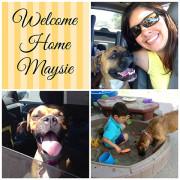 Maysie - June, 2014